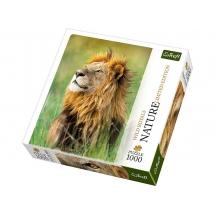 Пазл Кенийский лев, 1000 деталей